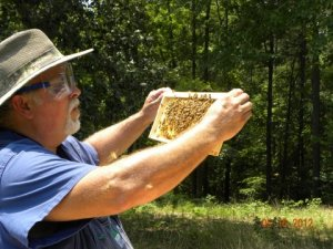 Kevin and his bees at BeginAgin Farm in Lafayette