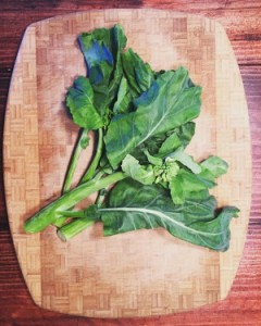Gai-lan (Chinese Kale / Chinese Broccoli)